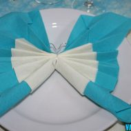 Pliage serviette papillon 2 couleurs