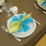 Pliage serviette mariage 2 couleurs