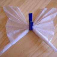 Pliage de serviettes papillon