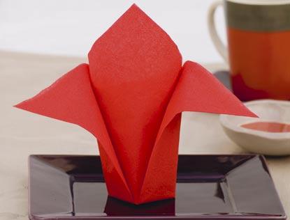 Serviette de table en papier pliage